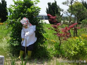 muzuki-jima036