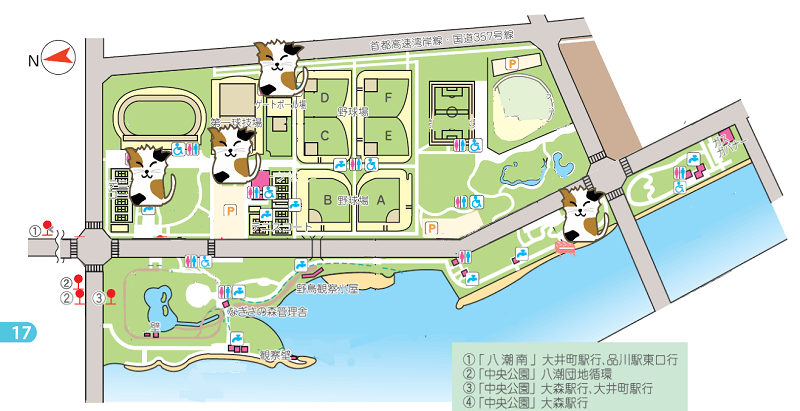 ooihutou-park-cats