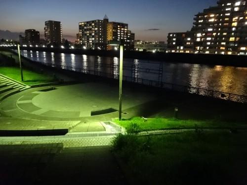 sumidagawa-neko010