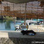 真鍋島(岡山県)のアクセス・宿泊・食事