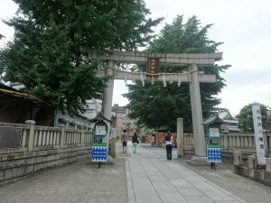 nekosen-asakusa008