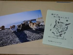 nekosen-asakusa018