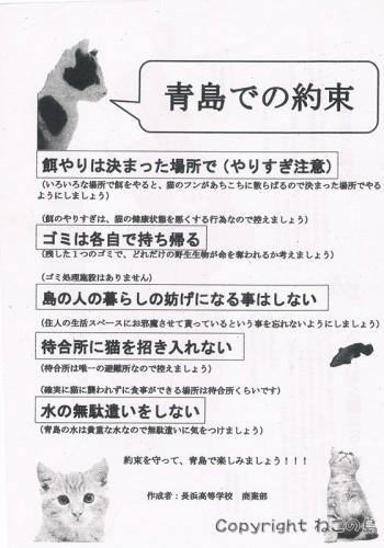 aoshima-note1-s